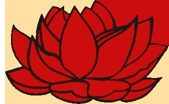 Dokmai Thai